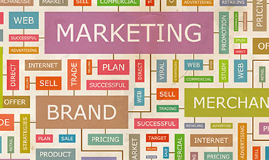 Marketing for non-marketing Professionals Master Section